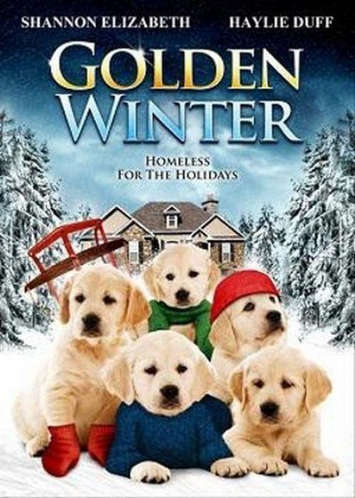 Golden Winter 2012 1080p BluRay H264 AAC