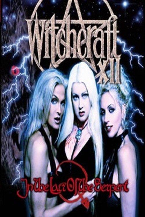 Swartzentruber amish witches